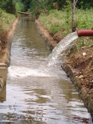 Ni agua del Trasvase
